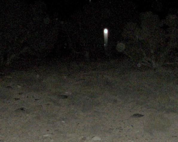 Mercur Cemetary Ghosly Orb