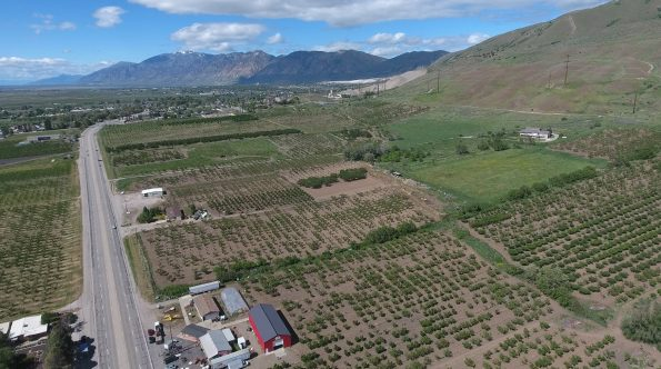 Tagge farm in Perry Utah drone view